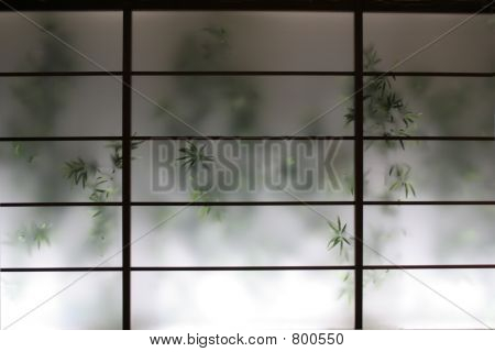 bamboo behind a wall screen