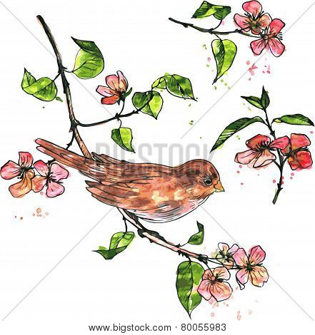 bird at branch with blossoms