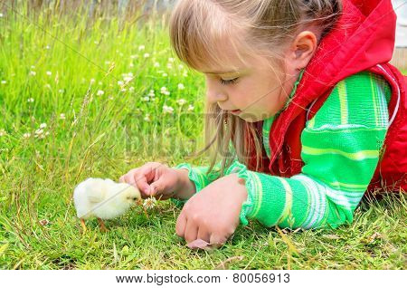 The child with a chicken