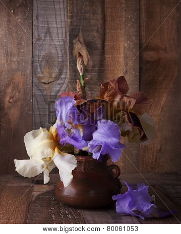 Irises  in clay pot against old wooden wall