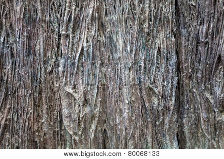 Old Wood Rind Texture Background