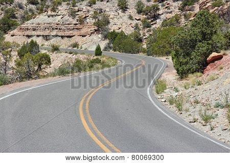 Road In Colorado