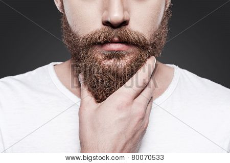 Touching His Perfect Beard.