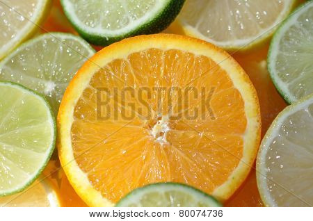 Orange Slice Among Citrus Fruit