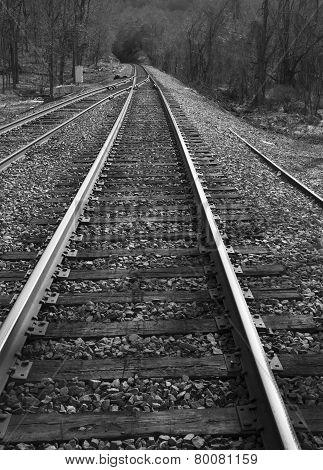 Railroad tracks black and white
