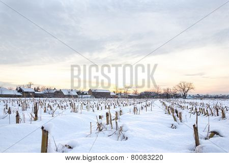 Winter Landscape With Snowy Countryside Village