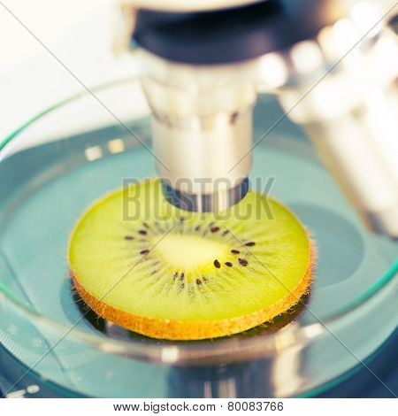 kiwi fruit in a laboratory microscope