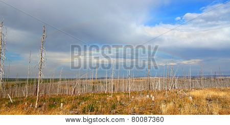 Montana Autumn Countryside Landscape