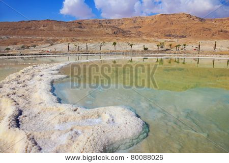 Salt formed a long track in the Dead Sea. Along the coast passes palm alley. Israel in October