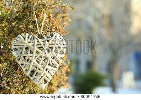 Bush with heart decoration on winter nature background