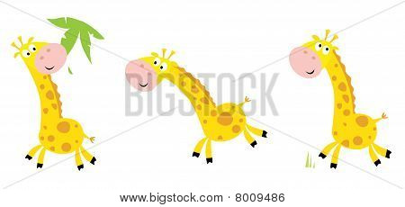 Vector cartoon yellow giraffe in 3 poses: eating, running and standing