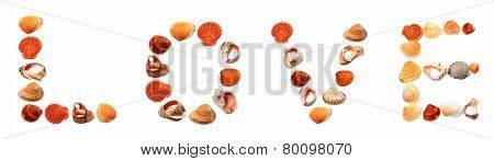 Text Love Composed Of Seashells