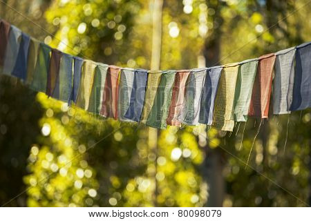 Prayer Flag in Leh city Ladakh ,India