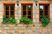 pic of torchlight  - Three New Windows in Old Stone Wall - JPG