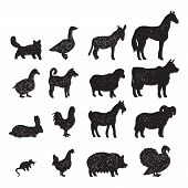 stock photo of horse-breeding  - Domestic farm animals black silhouettes icons set  with cow goat horse pig donkey isolated abstract vector illustration - JPG