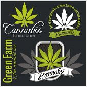 stock photo of cannabis  - Marijuana set  - JPG