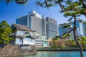 picture of kanto  - Tokyo - JPG