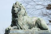 stock photo of colt  - Bronze lion statue graces entrance to Colt State Park - JPG