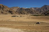 picture of hump day  - Sand Dune on the way to lamayuru from leh  - JPG