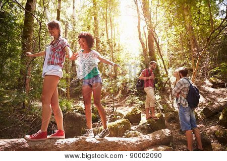 Group Of Friends On Walk Balancing On Tree Trunk In Forest