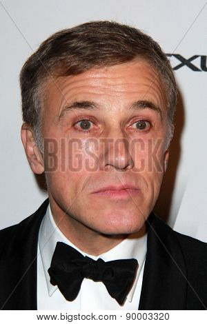 LOS ANGELES - JAN 11:  Christoph Waltz at the The Weinstein Company / Netflix Golden Globes After Party at a Beverly Hilton Adjacent on January 11, 2015 in Beverly Hills, CA