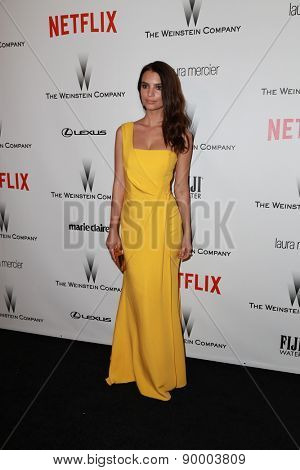 LOS ANGELES - JAN 11:  Emily Ratajkowski at the The Weinstein Company / Netflix Golden Globes After Party at a Beverly Hilton Adjacent on January 11, 2015 in Beverly Hills, CA