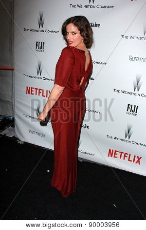 LOS ANGELES - JAN 11:  Noa Tishby at the The Weinstein Company / Netflix Golden Globes After Party at a Beverly Hilton Adjacent on January 11, 2015 in Beverly Hills, CA