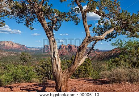 Sedona Arizona Landscape