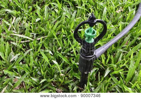 Sprinkler On Green Grass