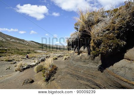 Tongariro Trek Landscape, Nz