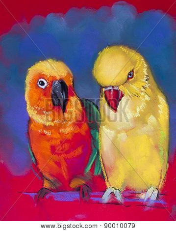 Beautiful parrots on red background