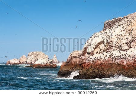 Ballestas Islands, Paracas National Reserve -