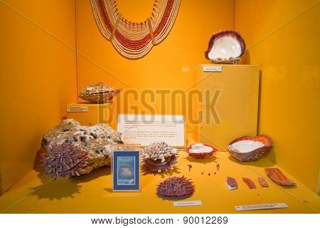 Exhibition from Archeological Museum in Manabi, Ecuador