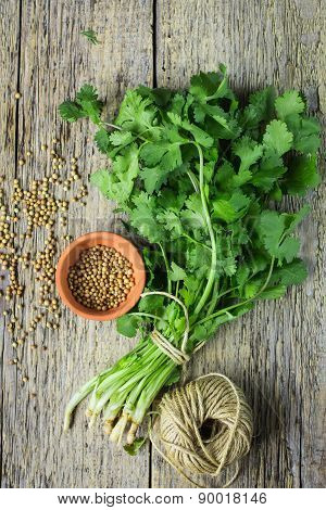 Bunch Fresh Cilantro And Coriander Seeds