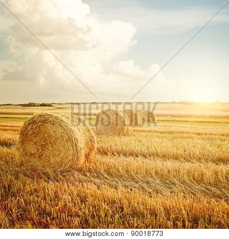 Summer Farm Scenery with Haystack