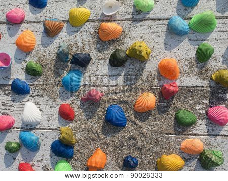 Background Of Seashells On A White Table With Sand