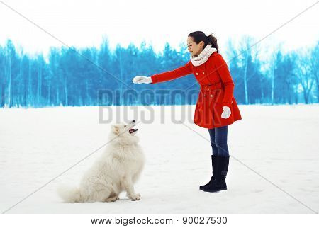 Woman Owner Trains White Samoyed Dog Outdoors In Winter Park
