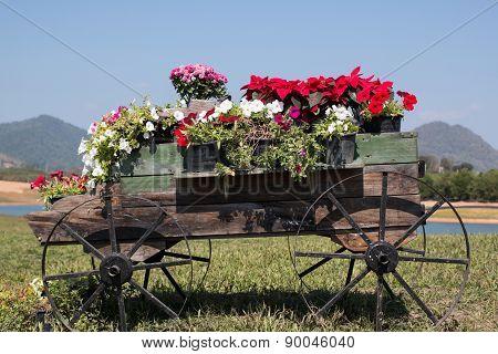 cart wooden in garden