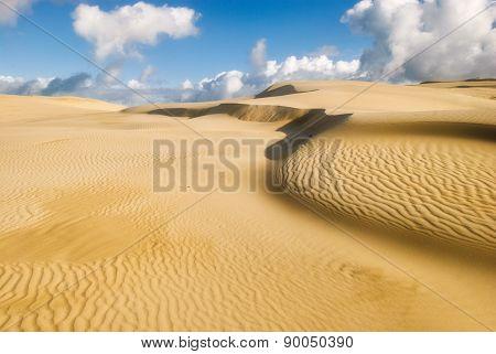 Yellow Soft Sand Dunes