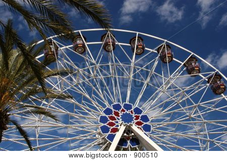Tropical Ferris Wheel