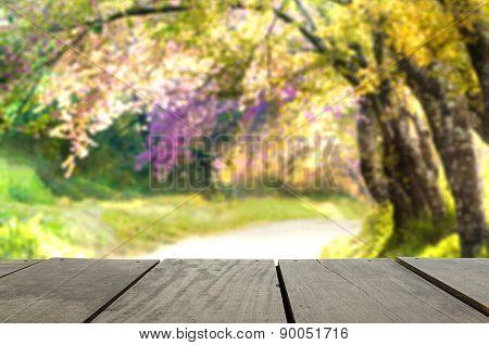 Perspective Wood Over Blur Beautiful Landscape Walkway In Beauti