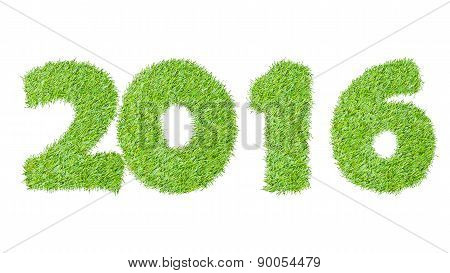 2016, New Year Made From The Green Grass, Isolated On White Can Use As Abstract Background
