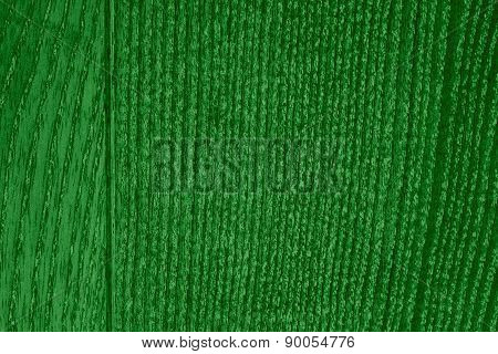 Green Wood Grain Texture