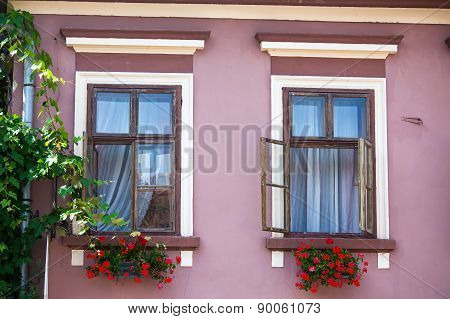 Pink Facade With Windows And Flowers From Sighisoara City Old Center
