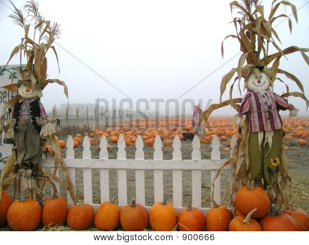 Picket Fence Scarecrows