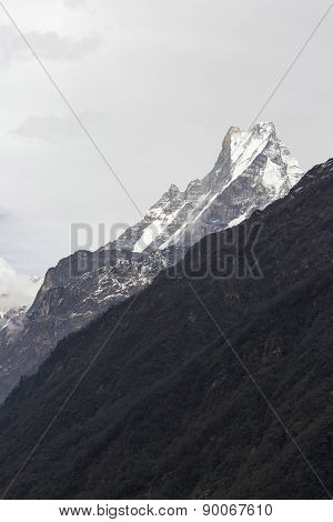 Fish Tail Or Mt.machhapuchhare In Nepal