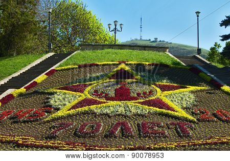 Beautiful Flowerbed  In Pyatigorsk