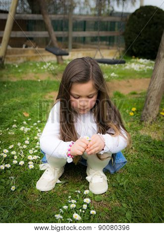 Child Collects Daisies In A Playground
