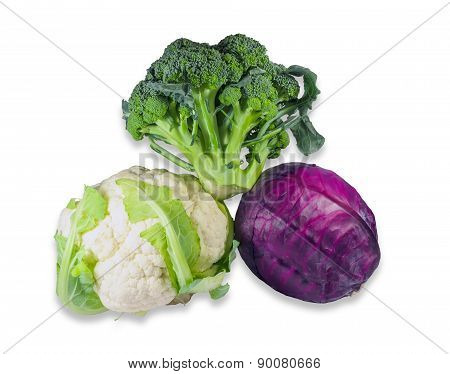 Various Cabbage