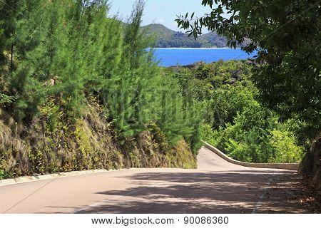 New road around the hotel Raffles Praslin Seychelles.